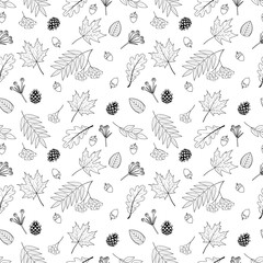 Autumn leaves black and white vector seamless pattern. Included rowan berries bunch, oak leaf, maple leaf, acorns.