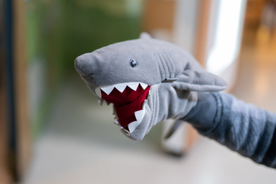 Stuffed shark toy on the child's hand.