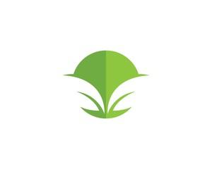green leaf ecology nature elemen