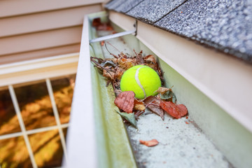 Image of a tennis ball stuck in gutter on a roof