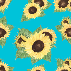 hand drawn sunflower isolated background