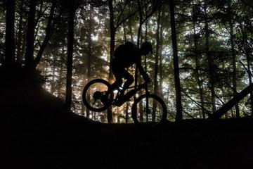 MTB Fahrt durch den Wald