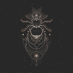 Vector illustration with hand drawn spider and Sacred geometric symbol on black vintage background. Abstract mystic sign.
