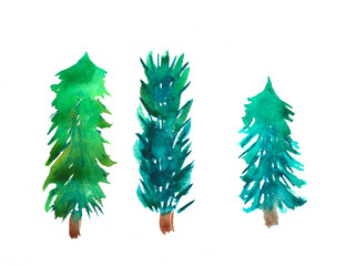 Hand painted watercolor graphic design elements.Spruce trees.