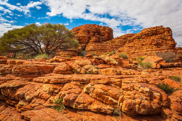 Rock formations and trees in Kings Canyon, Northern Territory, Australia