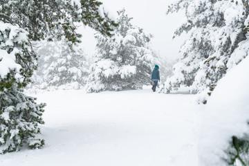 Mujer joven caminado en un bosque de pinos nevado. Hermoso día de invierno.
