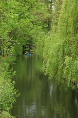 Spreewald, Lübben, Paddle, Germany