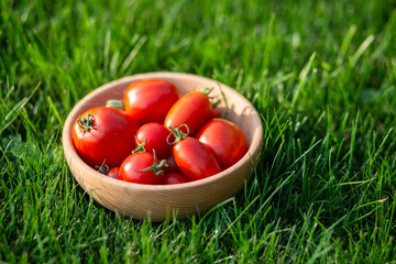 Red tomatoes on a wooden plate