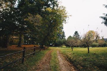 Autumn Landscape in Catalonia