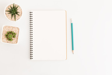 Top view white notebook with cactus on white background, flat lay photo and copy space for design