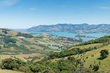 Poster Hill Hill view outlook Akaroa in New Zealand east coast natural landscape background
