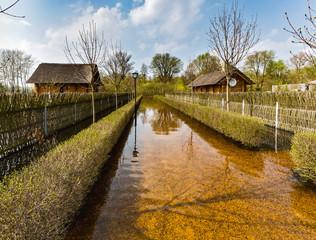 Spring flood of the River Lesnaya. Brest region, Belarus.