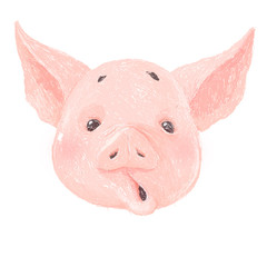 Adorable pig character surprised. Cute little piglet face isolated on white background. Pig emotion collection. Vector hand draw illustration.