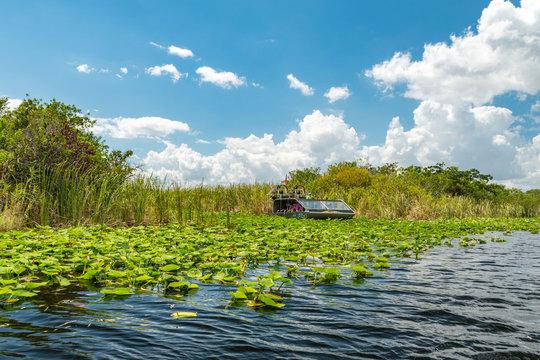 Airboat tour in Eveglades national park, Florida, USA