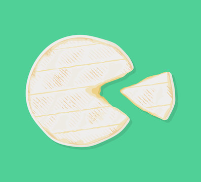 Cylinder of fresh creamy camembert de Normandie cheese with a cut out piece, top view. Traditional french dairy product. Vector hand drawn illustration.