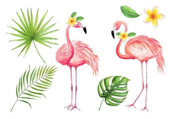 set of watercolor drawings of pink flamingos and palm leaves on a white background