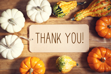 Thank you message with collection of pumpkins on a wooden table