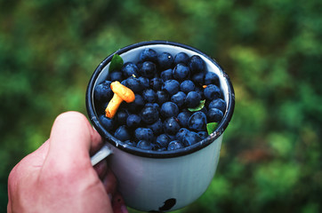 Holding a white enamel mug filled with freshly picked blueberries.