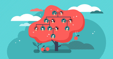 Family tree flat vector illustration. Example of relatives connection data.