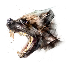 drawing animal muzzle wolverine side view on a white background
