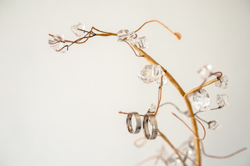 Two wedding platinum rings hanging on artificial tree