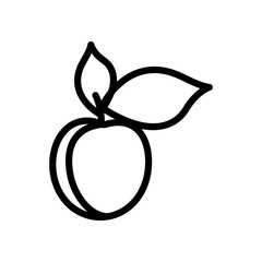 Fruit and berry collection - apricot. Line icon of whole apricot with leaves. Vector Illustration