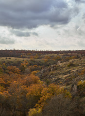 landscape of canyon in autumn