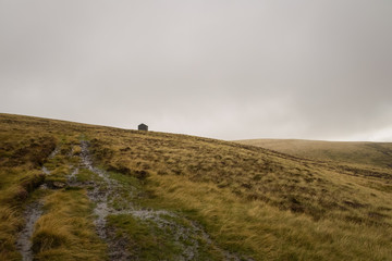 Wet hike through the Lake District of England with shelter in the distance and gray overcast