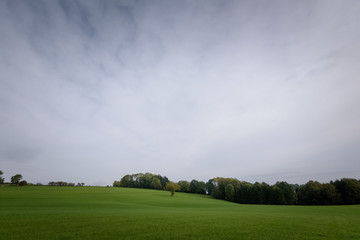 Green fields under dark sky Ardenne Belgium