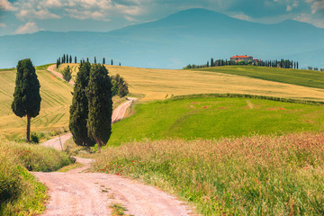 Typical Tuscany landscape with curved road and cypress, Italy, Europe