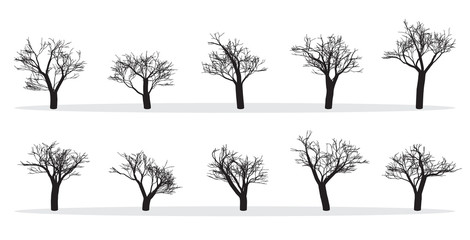Naked Trees Silhouettes Set. Hand Drawn Isolated. Autumn. Spring. Fall. Vector