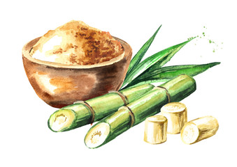 Sugar cane with brown sugar composition. Watercolor hand drawn illustration, isolated on white background