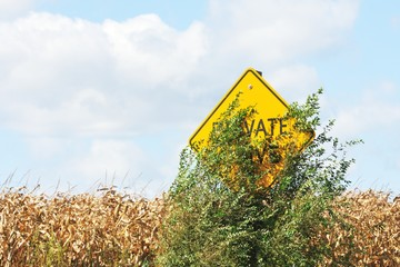Hidden Road Sign
