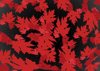 drawn autumn background with beautiful leaves, pattern texture. Red maple leaves, Vector black and dark red background