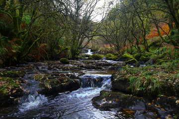 Glenariff river
