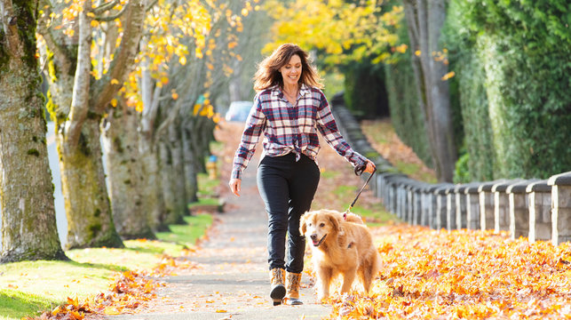 Woman walking golden retriever dog in Fall leaves