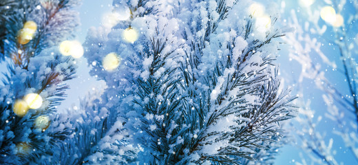 Snow coniferous branches with lights close-up. Winter Christmas Abstract Background