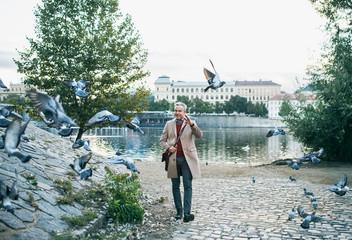 Mature businessman walking by river Vltava in Prague city, dispersing pigeons.