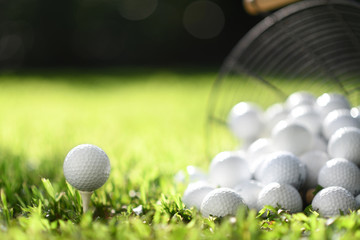 Foto op Plexiglas Golf Golf ball on tee and golf balls in basket on green grass for practice