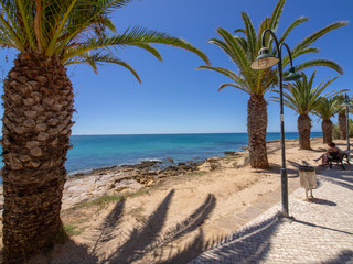 Portuguese beach with palmtrees