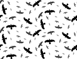 seamless background with silhouette of flying birds on a white background