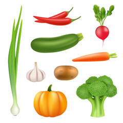 Vegetables realistic pictures. Healthy fresh food pumpkin broccoli cucumber pepper carrot vector 3d illustration. Set of vegetable carrot and pepper, nutrient radish and ripe harvest potato garlic