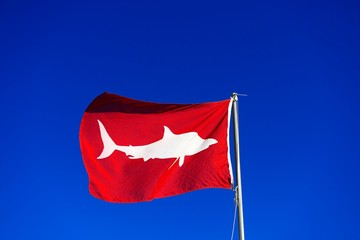 Red Flag signals high white shark danger, Muizenberg, Cape Town, Western Cape, South Africa, Africa