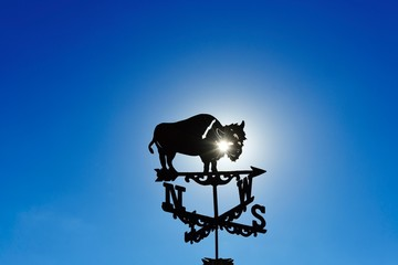 Weather vane with bison made of wrought iron turns in the wind, Utah, USA, North America