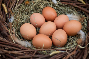 A pile of eggs in the hay in the nest