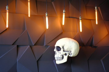 Human skull in profile in the light of lamps, skull weed on the side