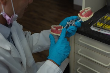 Male dentist holding artificial teeth in clinic
