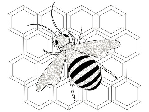 Insects, a bee on honeycombs. Anti stress coloring, raster for adults.