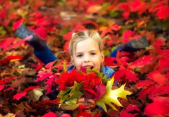 Девочка 6 лет сидит в красных осенних листьях в парке.