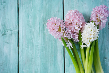 Fresh pink flowers hyacinths on woden surface